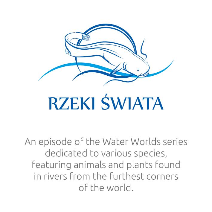 Water-Worlds-07en