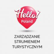 Ikona Zarządzania PL